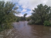 POUDRE_IMG_20130913_115812