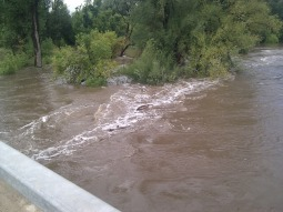 POUDRE_IMG_20130913_121551